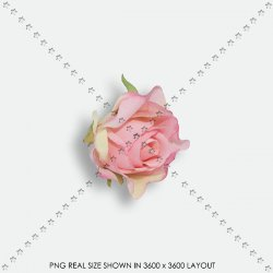 FLOWER 115 FABRIC ROSE