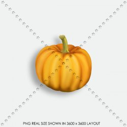 AUTUMN 154 PUMPKIN
