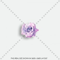 FLORAL 185 FABRIC ROSE