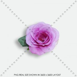FLORAL 198 FABRIC PURPLE ROSE