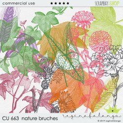 CU 663 NATURE BRUSHES