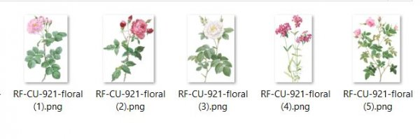 CU 921 FLORAL - Click Image to Close