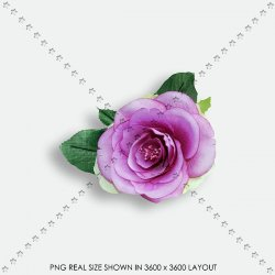 FLORAL 197 FABRIC PURPLE ROSE