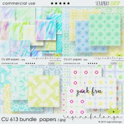 CU 613 BUNDLE PAPERS
