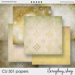 CU 501 PAPERS