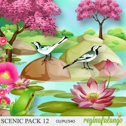 SCENIC PACK 12 pond