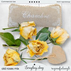 OLD ROSES MIX