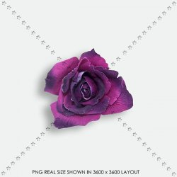 FLORAL 184 FABRIC PURPLE ROSE