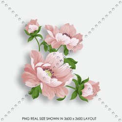 FLORAL 211 DRAW PINK BRANCHE