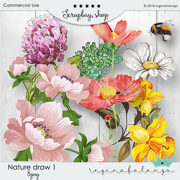 NATURE DRAW 1 - Click Image to Close