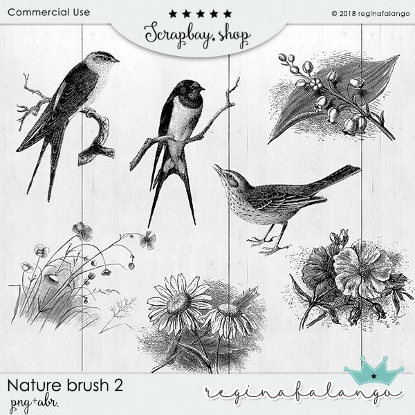 NATURE BRUSH 2