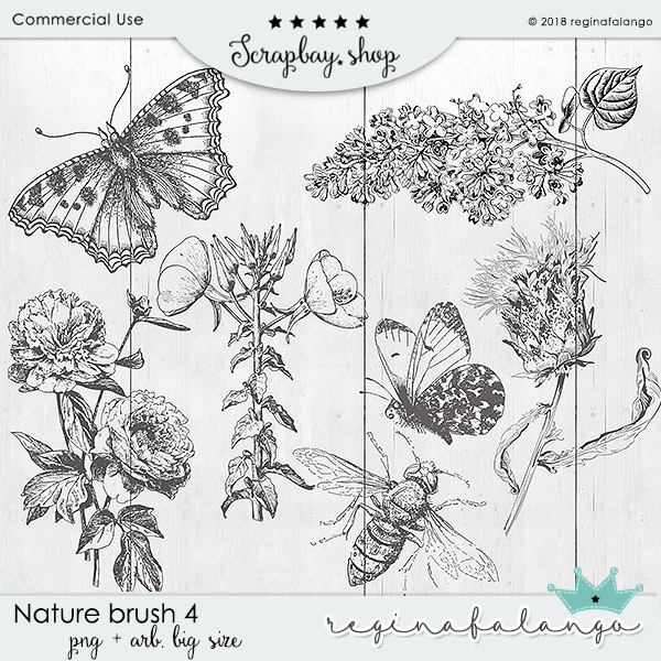 NATURE BRUSH 4